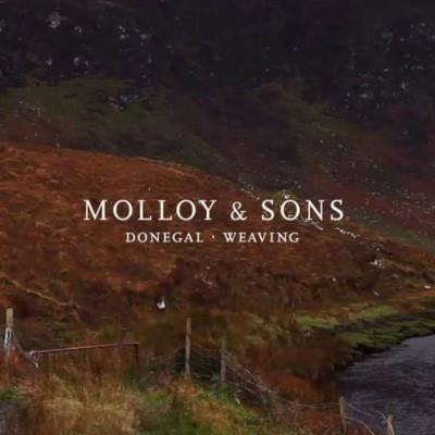 MolloyAndSons