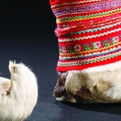 Footwear_Arctic